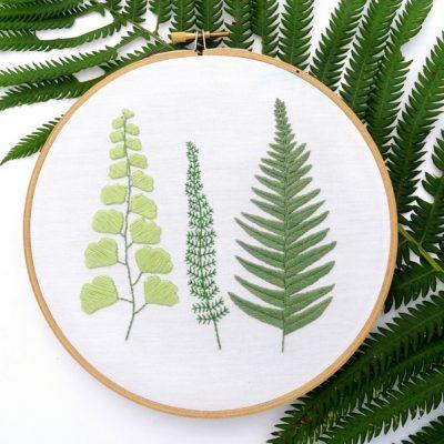 FREE Embroidery Pattern: Botanical Ferns